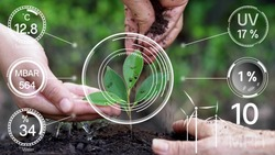 Smart digital agriculture technology by futuristic sensor data collection management by artificial intelligence to control quality of crop growth and harvest. Computer aided plantation grow concept.