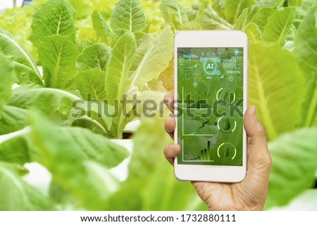 smart farmer holding smartphone,farm background,concept agricultural product control with artificial intelligence or AI technology,agriculture future market,tracking production by smart agriculture