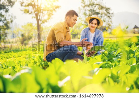 Smart farmer, Owner organics vegetable farm in the greenfield use smart pad for consultants to care organic vegetables. IOT Agriculture Concept