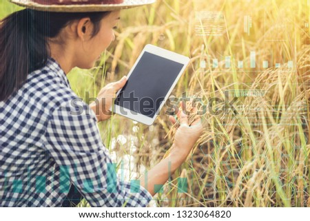 Smart farming Agricultural technology and organic agriculture asia woman using the research with tablet and studying the development of rice varieties in rice field. internet of things network concept