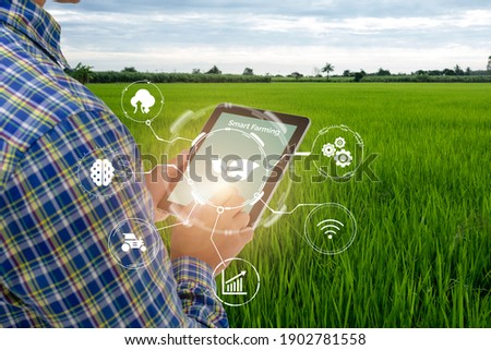 smart farming,agriculture industry technology concept, farmer using tablet to control in planting, farm, with high technology to monitor, check, control for best performance, efficiency, high profit Photo stock ©