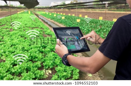 Smart farming argriculture concept.Man hands holding tablet on blurred organic farm as background #1096552103