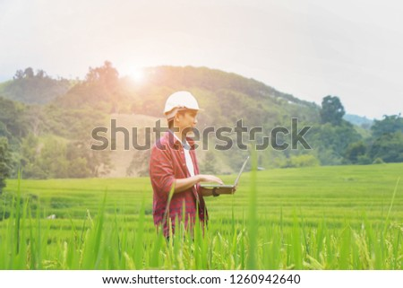 Smart Farming.Management Information System using technologies in agriculture.farmer with laptop computer in field using apps and internet of things(IOT) in production and agricultural research #1260942640