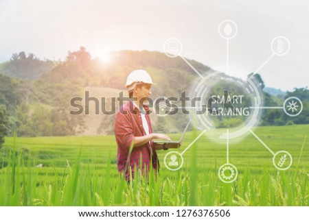 Smart Farming.Management Information System using technologies in agriculture.farmer with laptop computer in field using apps and internet of things(IOT) in production and agricultural research