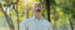 Smart handsome old man breathe pure air from tree and have good healthy in park