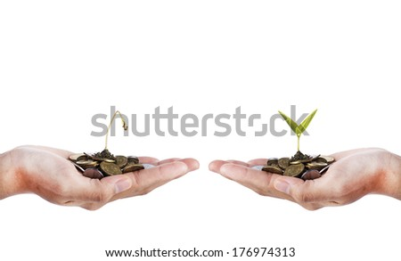 Smart Investment- Hand with dead seed and hand with growing seed over white background