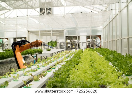 smart robotic in agriculture futuristic concept, robot farmers (automation) must be programmed to work in the vertical or indoor farm for increase efficiency, growing a seed, harvesting, reduce time #725256820