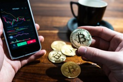 Smartphone with Bitcoin trading chart on the screen. Holding in hand a gold Bitcoin Cash coin. Trading on the cryptocurrency exchange.