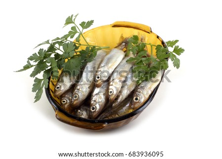Smelt fishes and parsley on dish