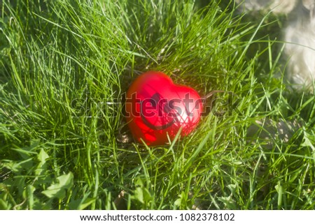 Smiley enamored heart in spring grass  #1082378102