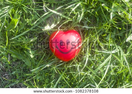 Smiley enamored heart in spring grass  #1082378108