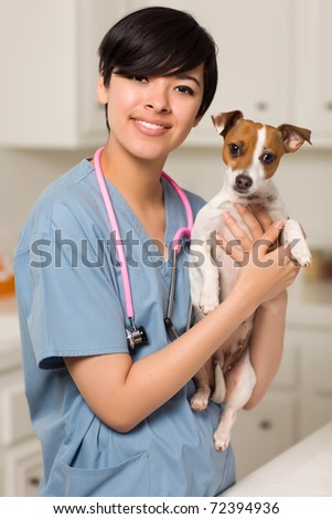 Smiling Attractive Mixed Race Veterinarian Doctor or Nurse with Puppy in an Office or Laboratory Setting.