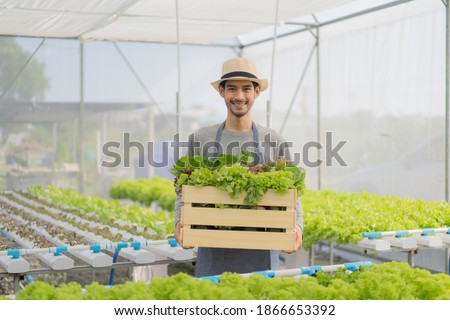 Smiling attractive young Asian male farmer with a beard in apron and straw hat standing, holding a wooden crate full of a variety of organic vegetables freshly harvested from organic greenhouse farm.