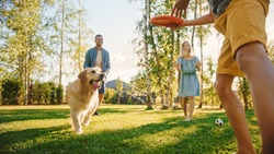 Smiling Beautiful Family of Four Play Soccer with Happy Golden Retriever Dog at the Backyard Lawn. Idyllic Family Having Fun with Loyal Pedigree Puppy Outdoors in Summer House. Handheld Ground Shot