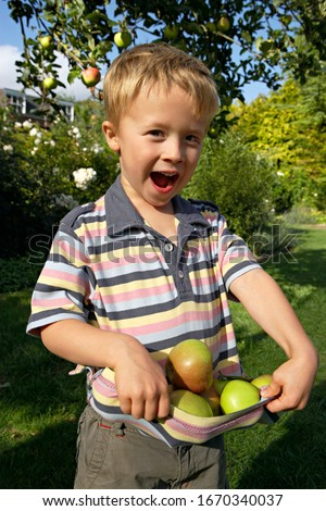 Smiling boy picking apples from fruit tree in garden at home at camera laughing