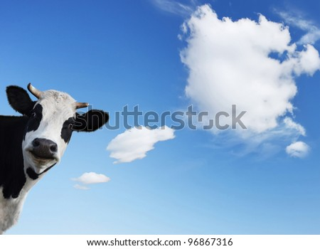 Smiling cow and blue sky with shaped clouds