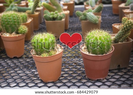 Smiling face on two cactus and Red heart shape. Love concept. #684429079
