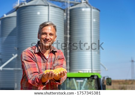 Smiling Farmer Showing Freshly Harvested Corn Grains Against Grain Silo. Farmer's Hands Holding Harvested Grain Corn. Farmer with Corn Kernels in His Hands Sitting in Trailer Full of Corn Seeds.