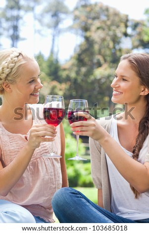 Smiling female friends clinking their wine glasses