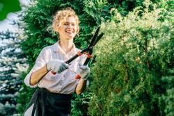 Smiling focused woman cutting plant using garden scissors. Positive mature slim sweden female working outdoor cutting bushes in the garden with scissors.