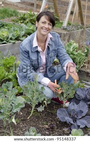 Smiling gardener working in th egarden pruning her plants - stock photo