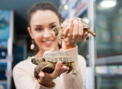 Smiling girl posing with two land turtles in zoo shop