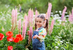 smiling kid girl with ponytails in denim overalls with shorts and a multi-colored t-shirt is standing among a flower lupine field.
