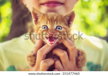 Smiling little girl holding small kitten in hands outdoor.Funny little cat with a happy expression outdoor in little girls hands.Animal love and care concept.