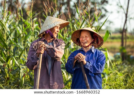 Smiling old Vietnamese couple on a farm with conical hats (non la)