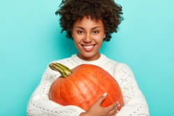 Smiling positive curly haired girl in white sweater, holds autumn pumkin, being in high spirit, celebrates Halloween in October, happy to have good harvest, models against blue studio background