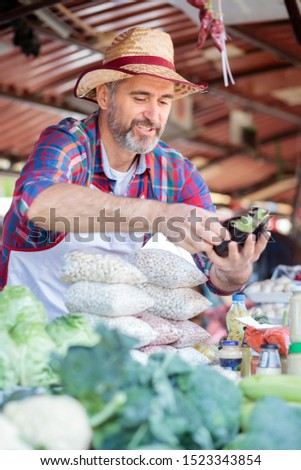Smiling senior farmer standing behind the stall on a local market place, selling his organic beans, egg plants and other vegetables and products. Healthy food production