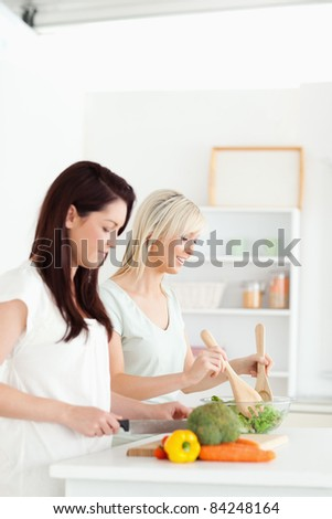 Smiling young Women preparing dinner in a kitchen