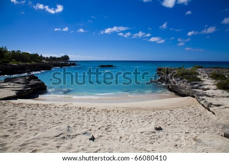 Smith Cove beach and ocean in Grand Cayman, Cayman Islands