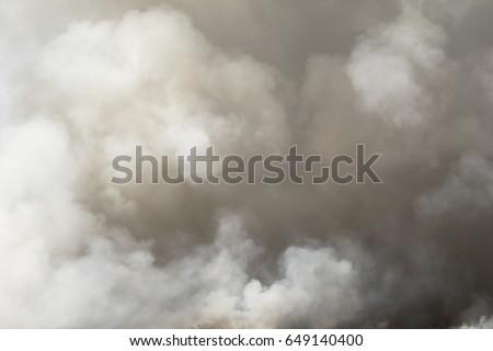 Smoke #649140400