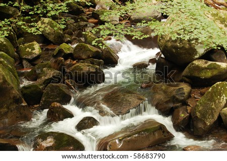 Smoky Mountains river on rocks, Big Creek trail