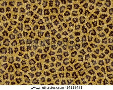 Smoother Skin Texture Smooth Texture of Leopard Skin