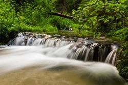 Smooth water cascade at Jelen wild river. Nature water landscape. Landscape park Solska forest at Roztocze, Poland, Europe.
