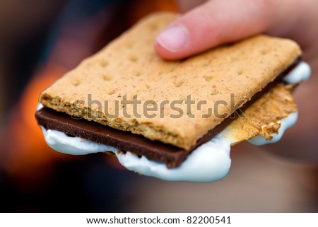Smore's for dessert - stock photo