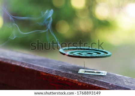 Smouldering repellent spiral from mosquitoes, protection against insects. Stockfoto ©