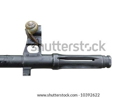 snail on machinegun