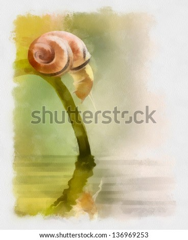 Snail .Picture I have created myself with watercolors.
