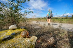 Snail Symbolizing Home Carrying Pilgrims and a Woman Pilgrim Walking the Way of St James - Camino de Santiago