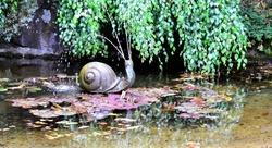 Snail water fountain