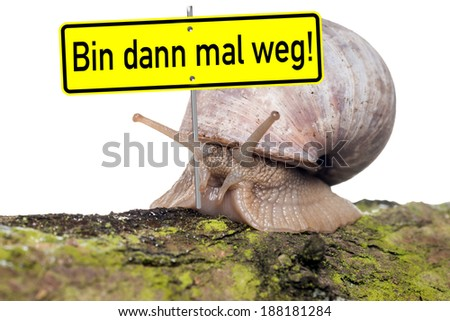 Snail with shield and the german words I then get away / big Snail - stock photo