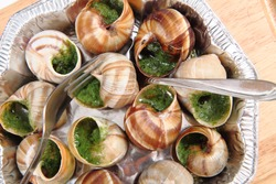 snails as gourmet food