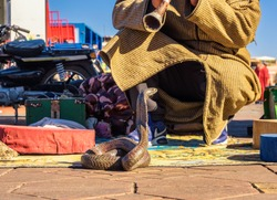 Snake charmer plays music for his cobra at the Jemaa el-Fnaa square in Marrakesh, Morocco