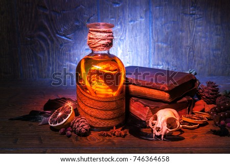 Snake cobra in the bottle, cat skull, old books, dry rose and crow quill on old wooden desk. Vintage witchcraft still life. #746364658
