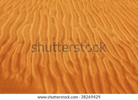 snake footprints on sand - stock photo