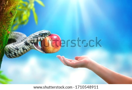 Snake in paradise giving an apple fruit to a woman. Forbidden fruit concept. Stockfoto ©