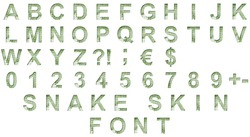 Snake scales font. Alphabet letters ABCDEFGHIJKLMNOPQRSTUVWXYZ and digits 1234567890 set cut out of paper on the background of a green snake skin with large scales.